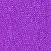 Pashmina purple