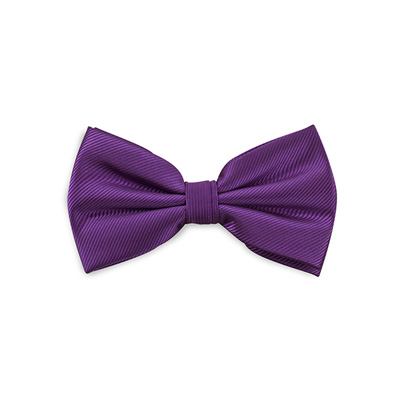 Bow tie purple repp